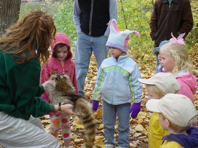 Toddlers examine a raccoon pelt with a park naturalist