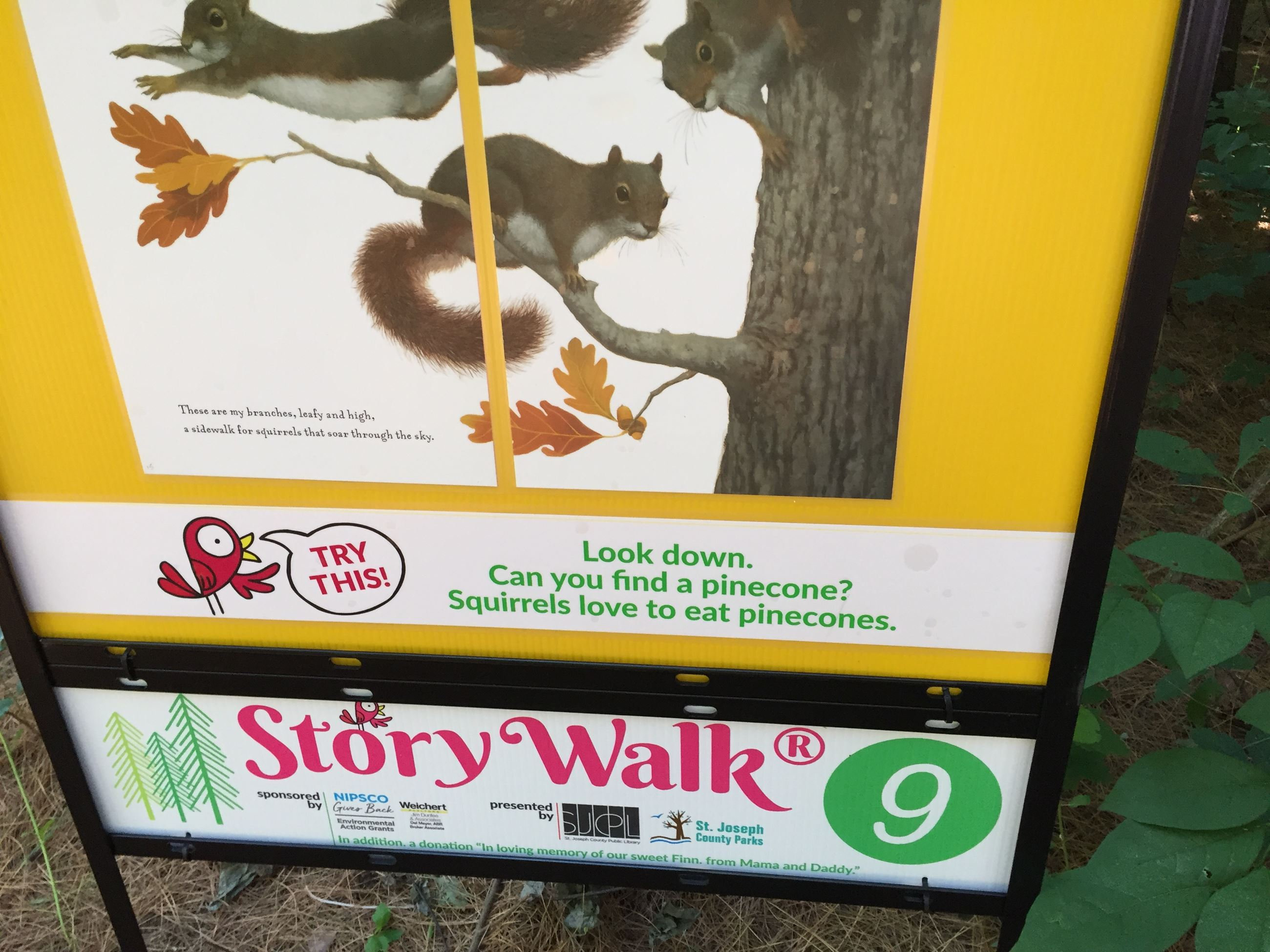 Some story pages along the walk include activities to try!